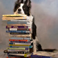 Those of us in Border Collies have long known that they're in a class by themselves in the arenas of intelligence, agility, drive, and trainability. They're different than other dogs […]