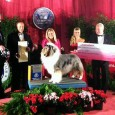 After reigning over 2011 as the top Rough Collie in the USA, GCH CH Wyndlair Cherokee Vindication was awarded Best of Breed at last year's Westminster Dog Show, which I documented […]