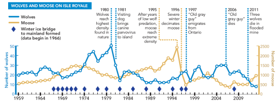 wolf_moose_population_graph_isle-royale