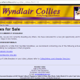 "Wyndlair Kennels has closed down.  They're the outfit that intentionally bred Merle to Merle in order to create a double merle stud dog named Wyndlair Avalanche ""Aidan"" that would always […]"