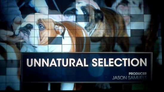 Unnatural_Selection_dog_breeding_RealSportsBryantGumble_cover