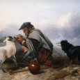 From Anecdotes of Dogs by Edward Jesse, Esq., 1858 The Colley Or Shepherd's Dog: Gently Returns the Sheep   Mr. Blaine relates the following circumstance:— I remember watching a shepherd boy in Scotland, […]
