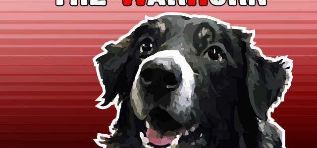 Exciting news, Border-Wars fans: Today is the launch of the inaugural episode of The WarHorn, a dog culture podcast! Like the blog, the podcast will tackle dog culture, breeding ethics, […]